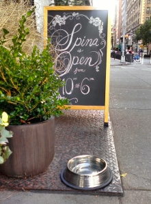 Water bowl, Greenwich Village